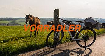 Electrolyte / Die Vorradler-Familie